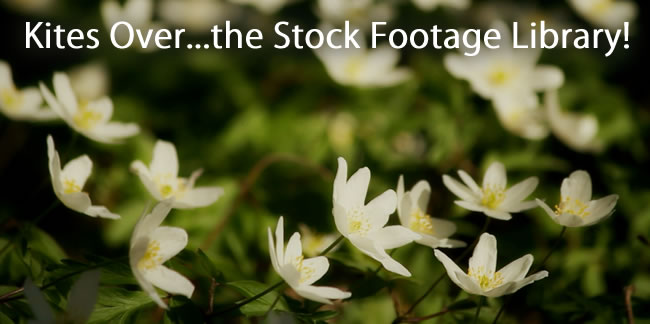 stock-footage